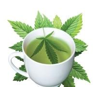 CBD Tee kaufen