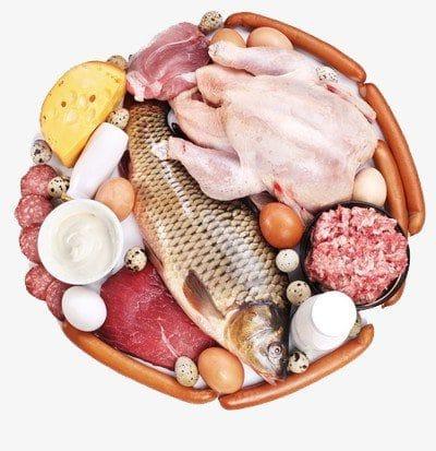 fish n meat