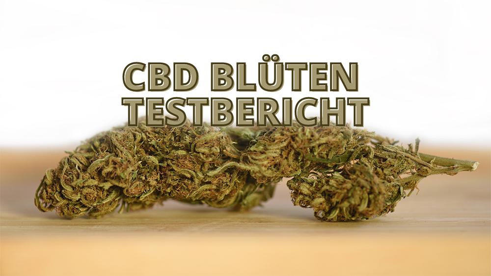 cbd blüten test
